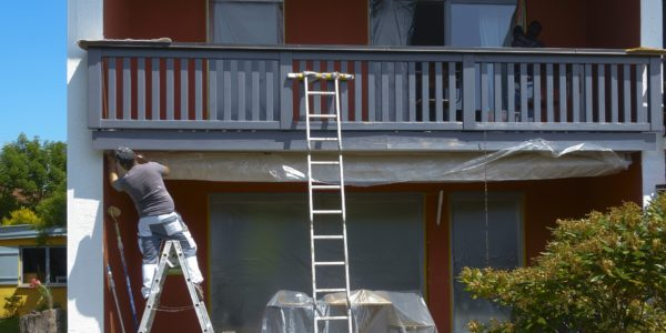 Should You Paint Your House in the Summer